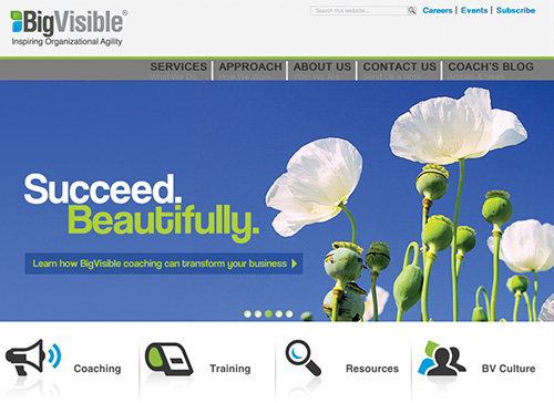 bigvisible