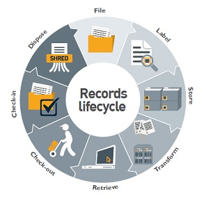 Records lifecycle visualization